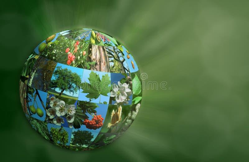 Ilustração 3d natural ecológica do eco do verde da natureza do globo do planeta ilustração do vetor