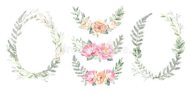 Ilustração da aguarela As grinaldas botânicas com verde ramificam a ilustração stock