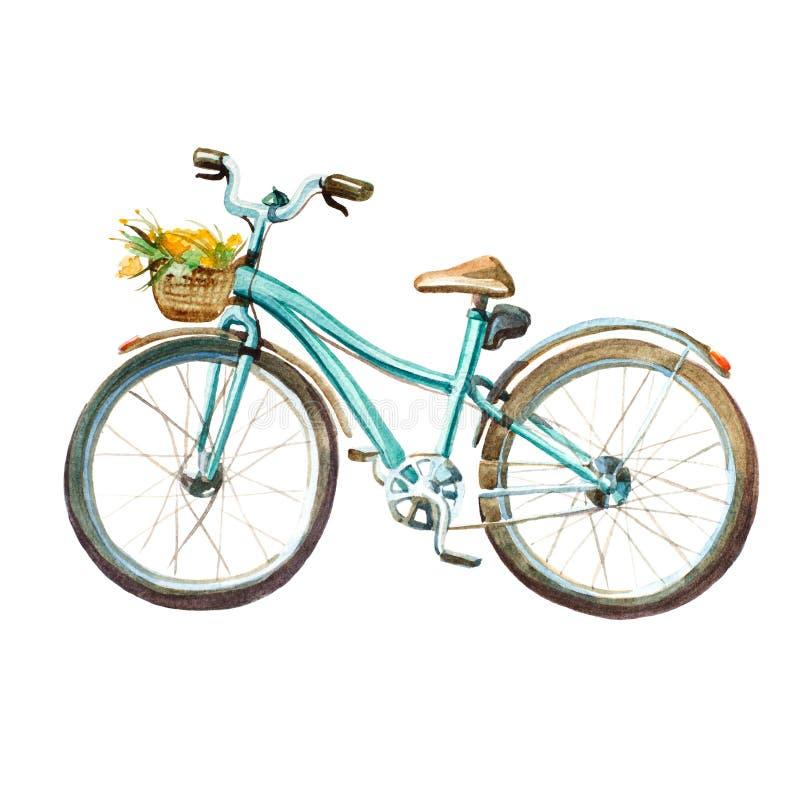 Ilustração da aguarela bicicleta da hortelã do ` s da menina com a cesta completa de ilustração stock
