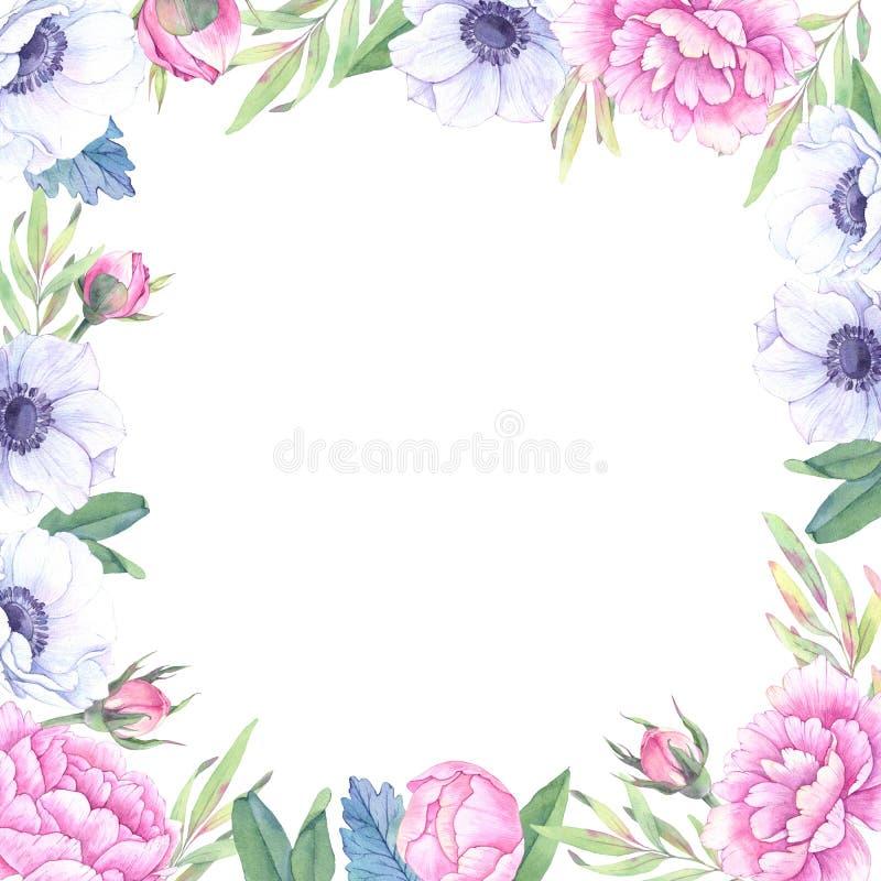 Ilustração da aguarela Frame floral com flores da mola Weddi ilustração stock