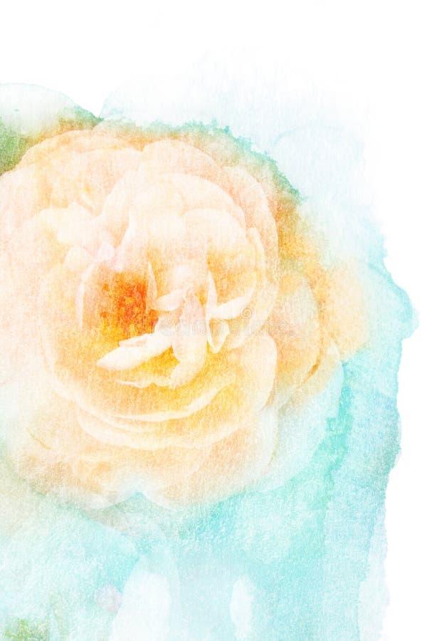 Ilustração da aquarela da flor ilustração do vetor