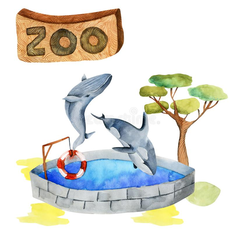 Ilustração da aquarela das baleias no jardim zoológico ilustração stock