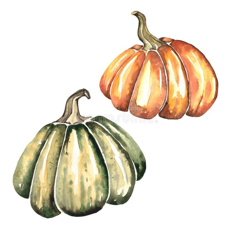 Ilustração da aquarela de duas abóboras brilhantes para o outono e o projeto de Dia das Bruxas ilustração do vetor