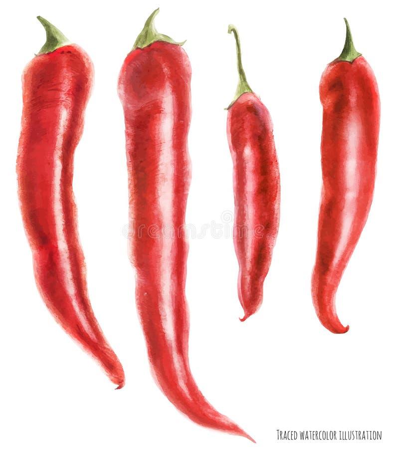 Ilustração da aquarela de pimentas de pimentão ilustração do vetor