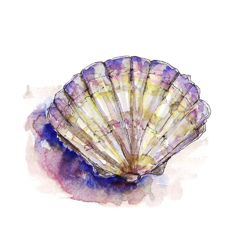 Ilustração da aquarela de shell de um mar ilustração do vetor