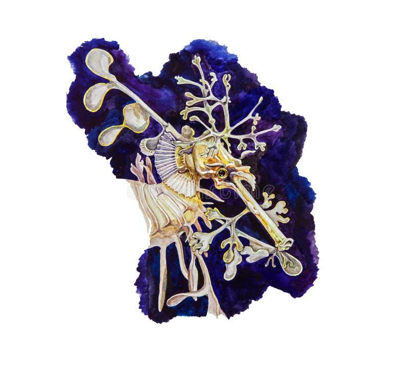 Ilustração da aquarela de um cavalo marinho tropical amarelo bonito Imagem tirada dos peixes de mar mão exótica no fundo azul nat ilustração royalty free