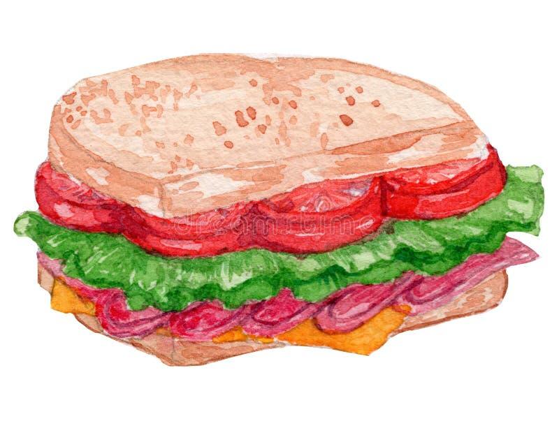 Ilustração da aquarela do sanduíche de BLT imagem de stock royalty free