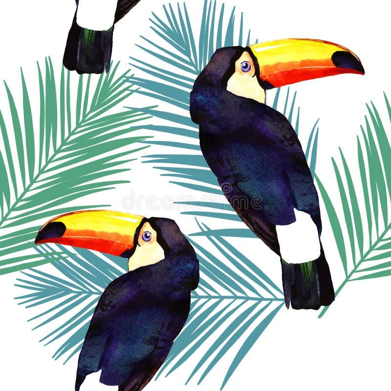Ilustração da aquarela do tucano e do teste padrão sem emenda em folha de palmeira no fundo branco ilustração do vetor