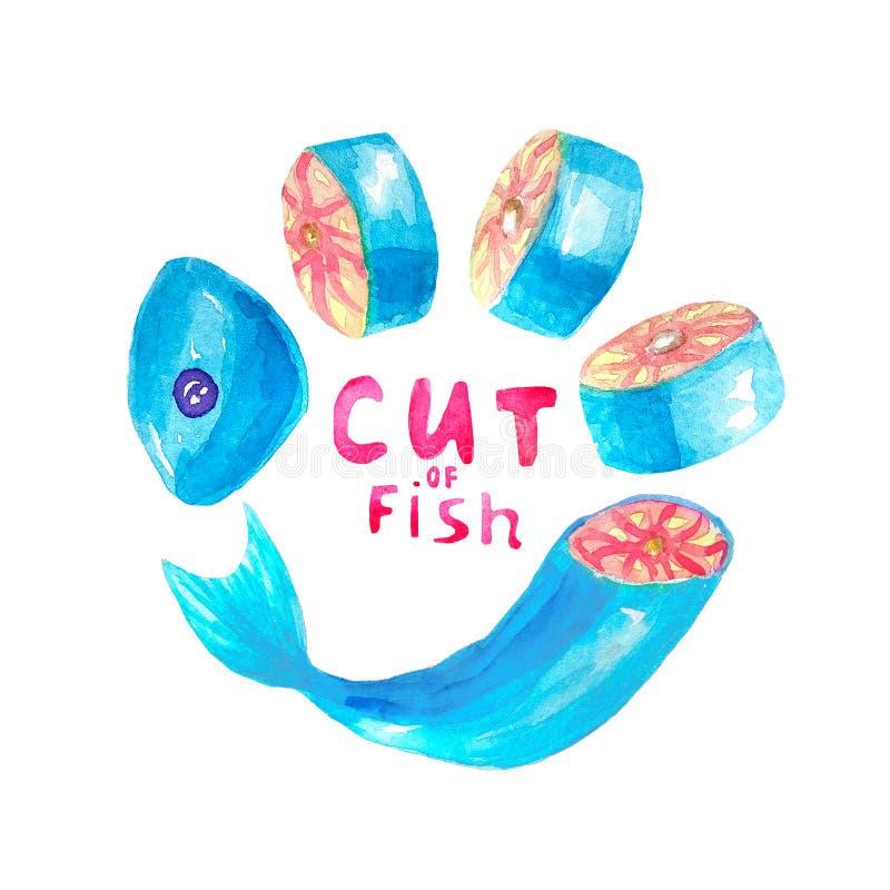 Ilustração da aquarela da parte de bifes ou das fatias de peixes vermelhos de que se encontra em um semicírculo com rotulaçã imagens de stock royalty free