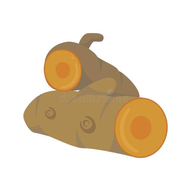 Ilustração da cúrcuma do vetor isolada no estilo dos desenhos animados Ervas e série da espécie ilustração stock