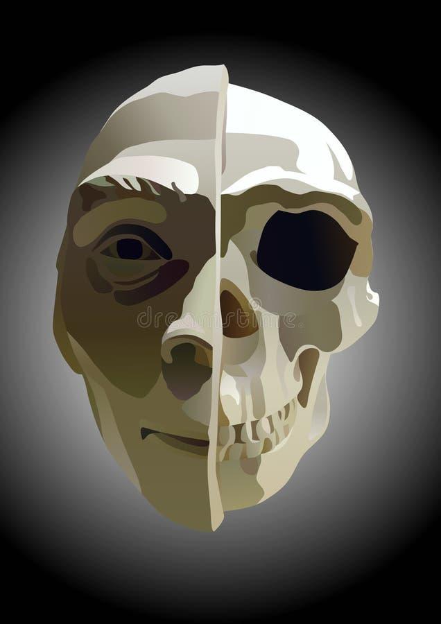 A ilustração da cabeça ilustração do vetor