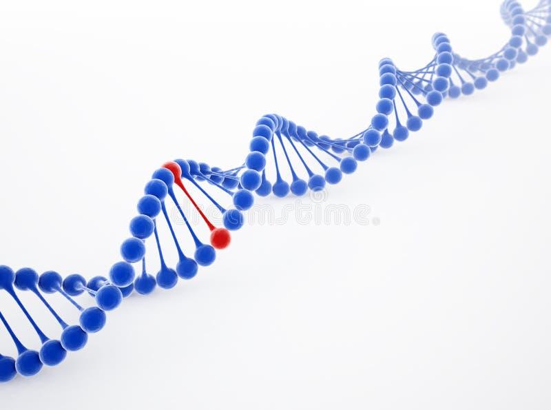 Ilustração da costa do ADN ilustração royalty free