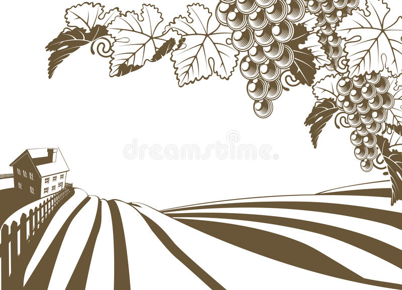 Ilustração da exploração agrícola da vinha do vinhedo