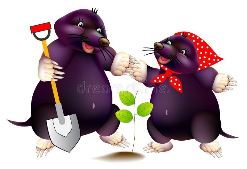 Ilustração da fantasia de duas toupeiras pequenas bonitos que trabalham no jardim da mola Cópia para o livro de texto da escola d