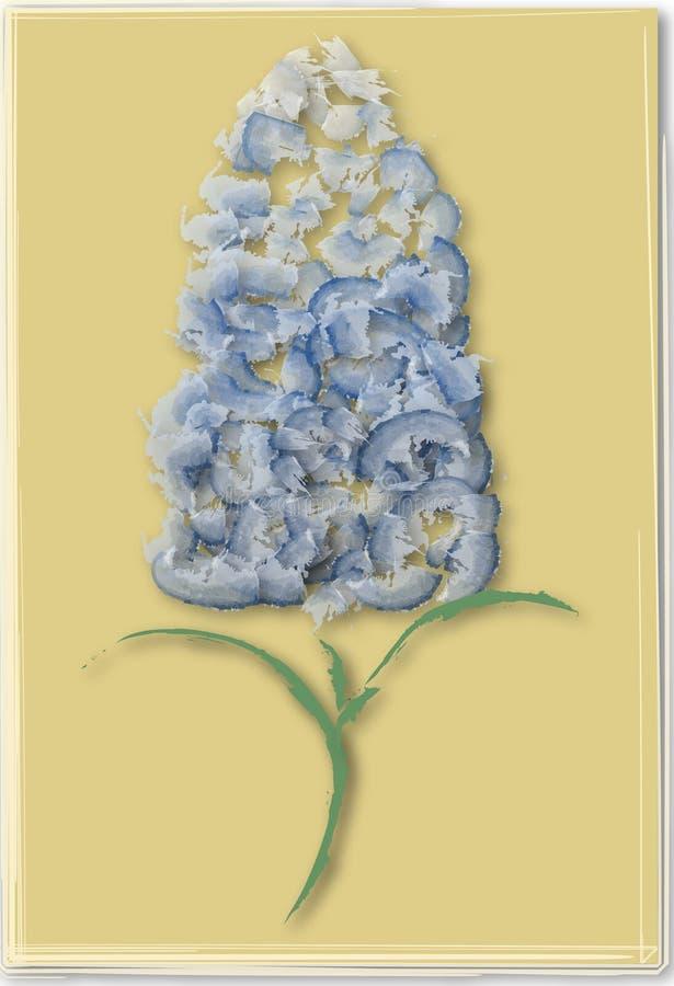 Ilustração da flor da pervinca ilustração do vetor