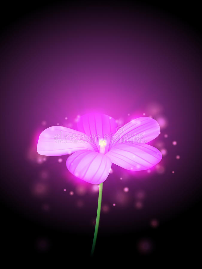 Ilustração da flor do vetor ilustração do vetor