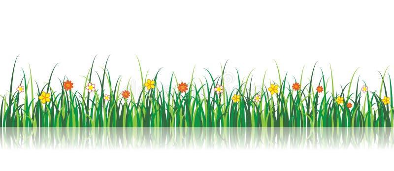 Ilustração da grama do vetor com flores imagem de stock royalty free