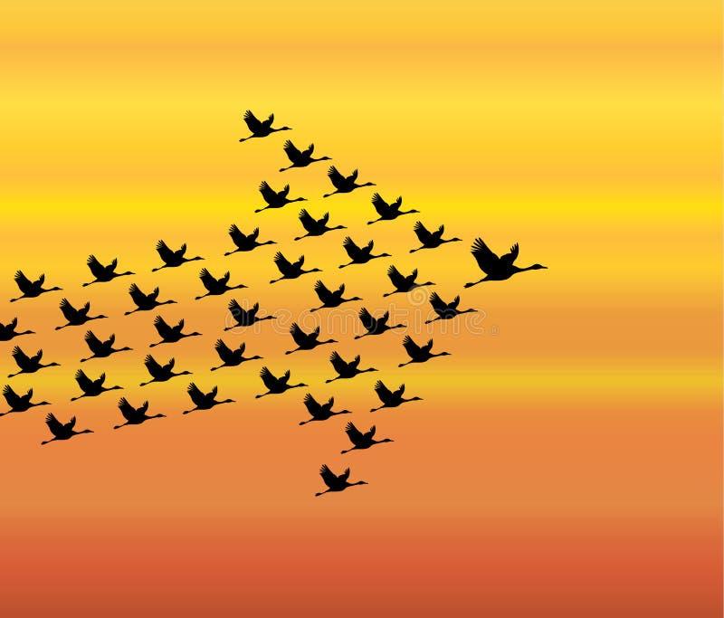 Ilustração da liderança e do conceito da sinergia: Um número de cisnes que voam contra um fundo do céu da noite ilustração do vetor