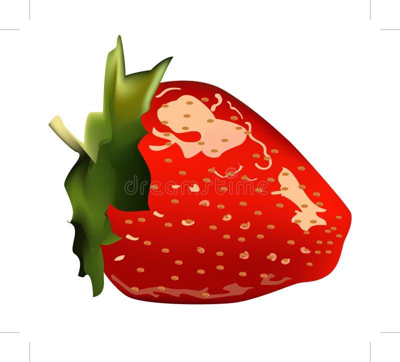 Ilustração da morango imagem de stock