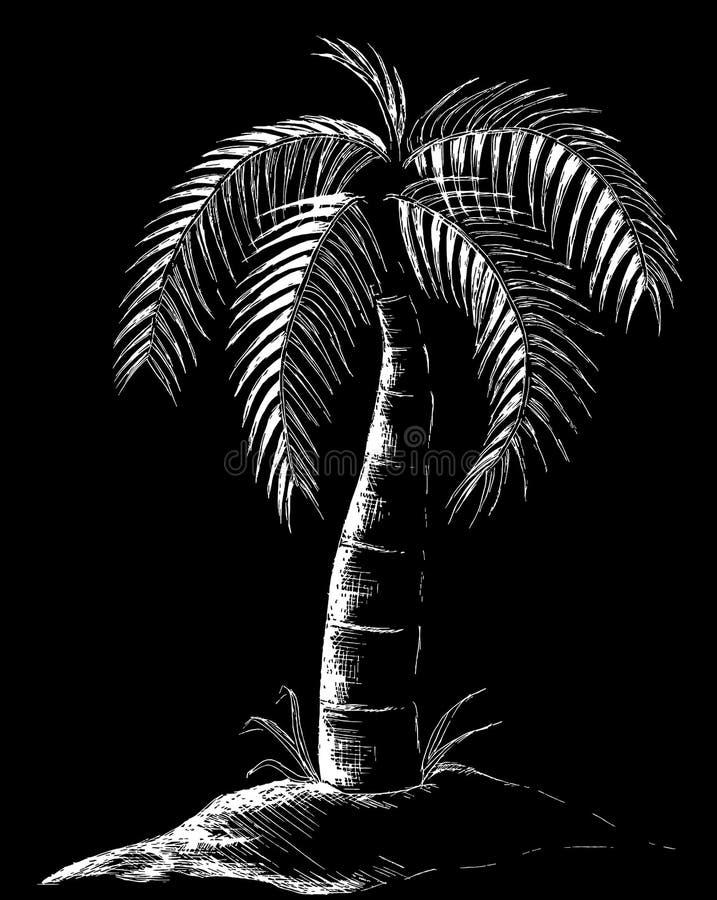 Ilustração da palmeira no preto ilustração stock