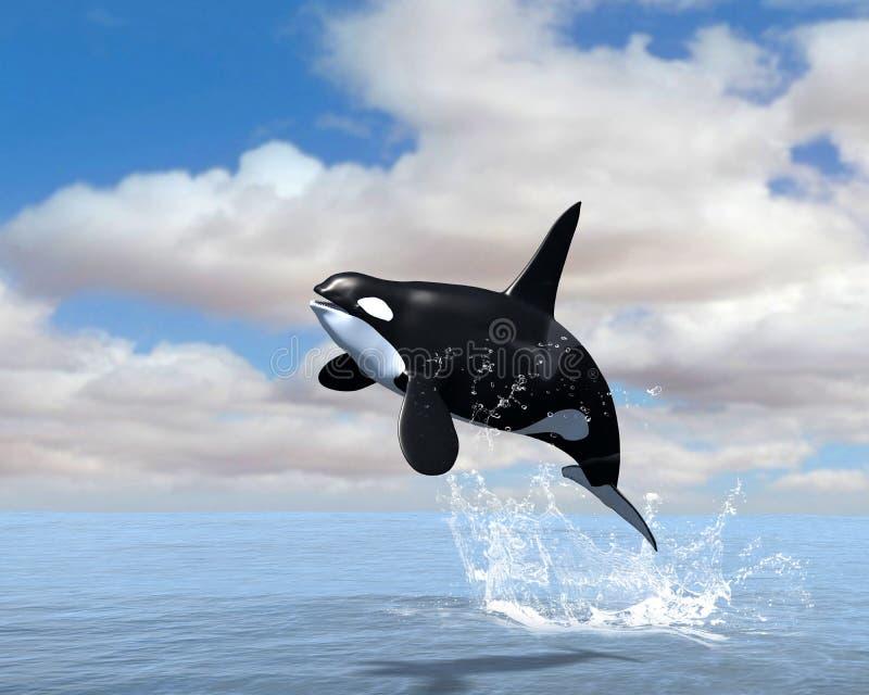 Ilustração da ruptura da baleia de assassino da orca ilustração royalty free