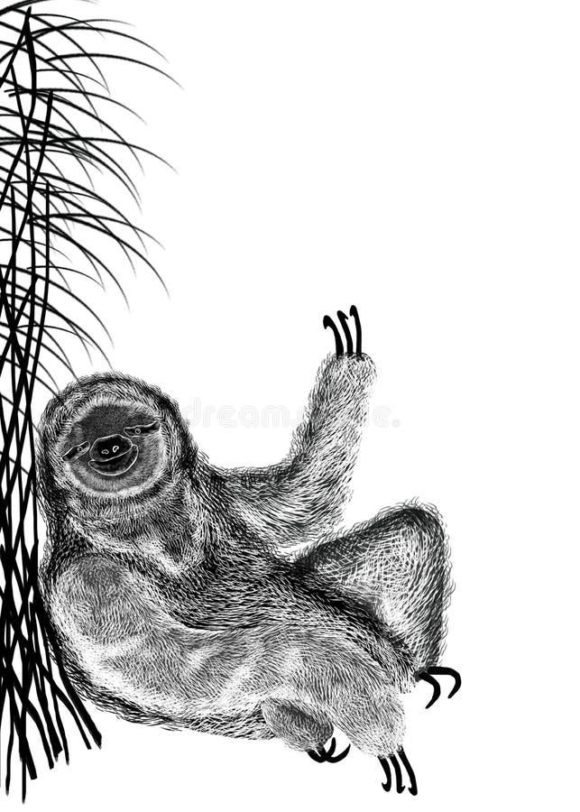 A ilustração da silhueta textured preta da preguiça, de que senta-se sob o junco do arbusto Isolado no fundo branco ilustração do vetor