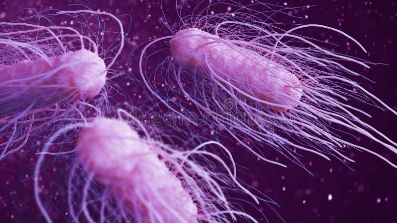 Ilustração das bactérias 3d das salmonelas ilustração royalty free