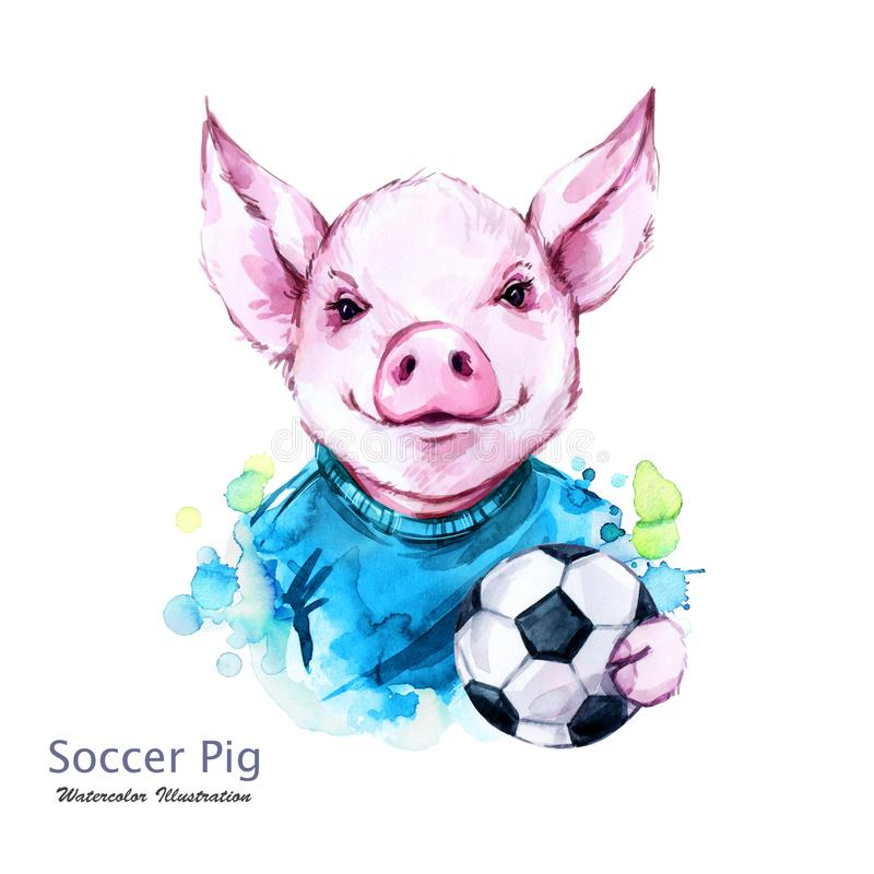Ilustração das férias de verão Porco do futebol da aquarela com bola Jogador de futebol engraçado esporte Símbolo de 2019 anos ilustração stock