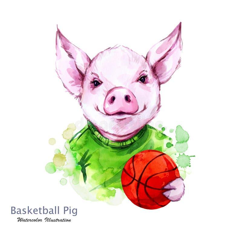 Ilustração das férias de verão Porco dos desenhos animados da aquarela com bola alaranjada Jogador engraçado do baskeball esporte ilustração royalty free