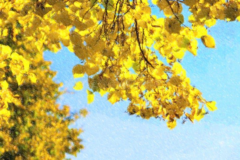 Ilustração das folhas de outono com o fundo do céu azul imagem de stock