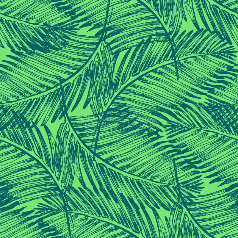 Ilustração das folhas de palmeira Planta tropical da selva ilustração stock