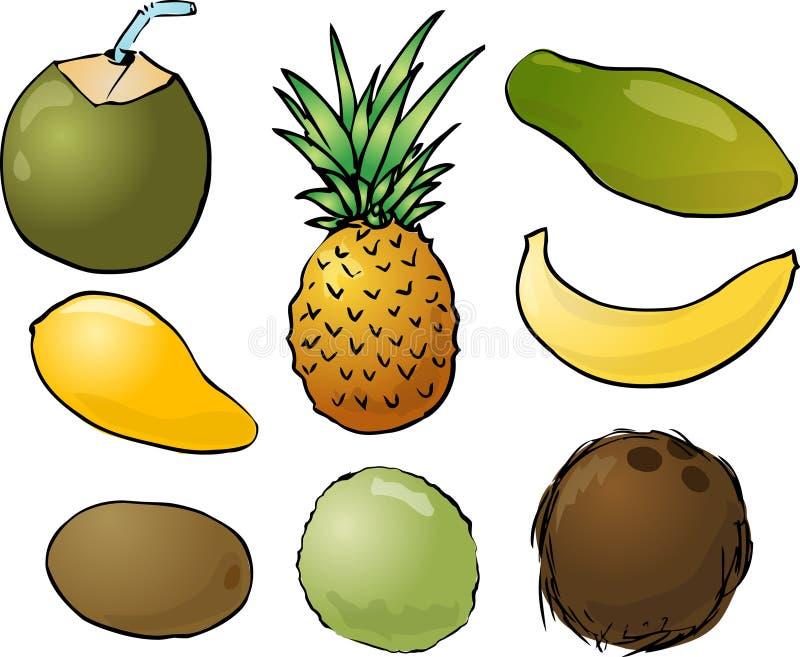 Ilustração das frutas tropicais ilustração royalty free