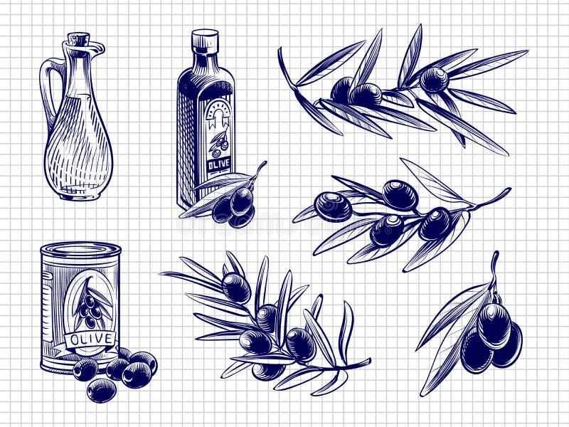 Ilustração das garrafas e das azeitonas de azeite do vetor ilustração stock