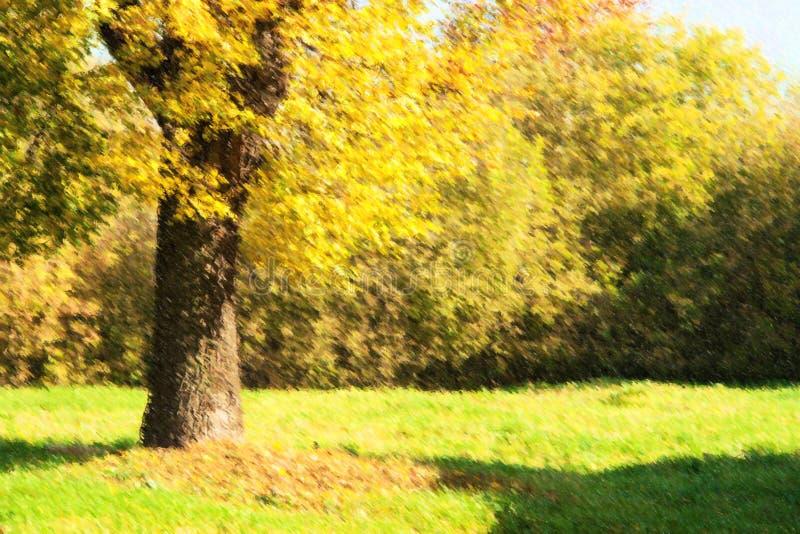 Ilustração de árvores do outono no parque fotografia de stock