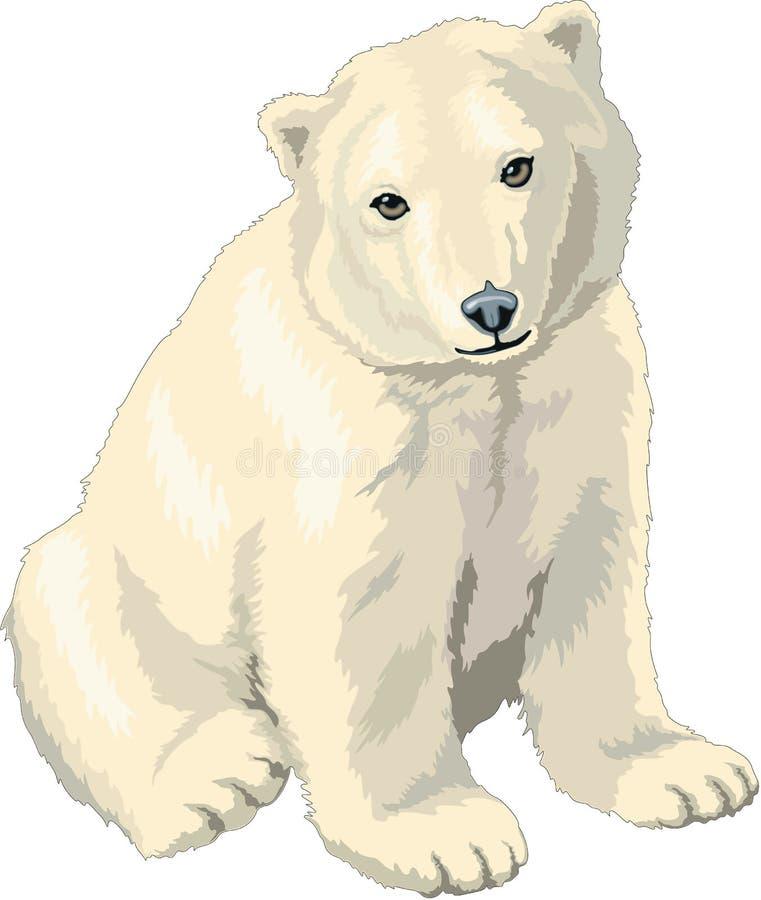 Ilustração de Cub de urso polar ilustração stock