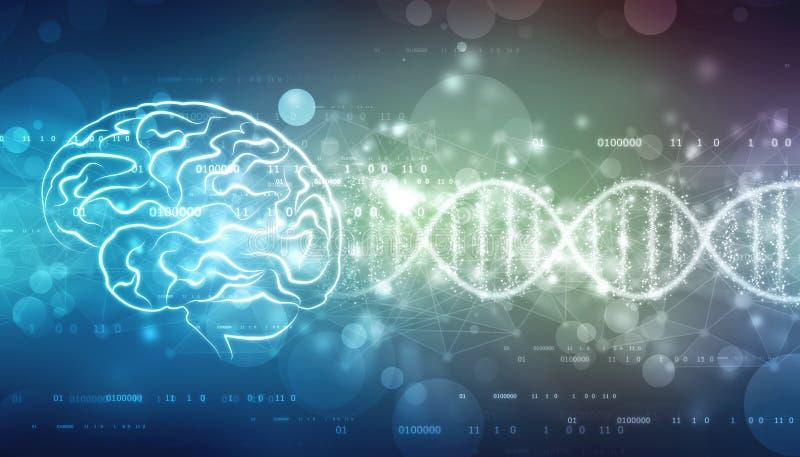 Ilustração de Digitas da estrutura do cérebro humano, fundo criativo do conceito do cérebro, ilustração stock