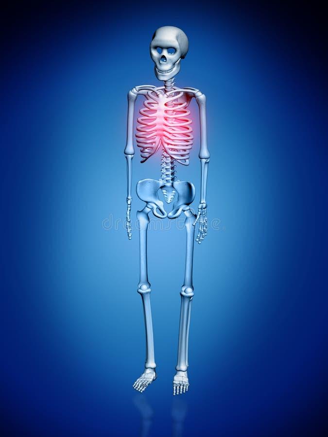 Ilustração de Digitas de um Skelton ilustração do vetor