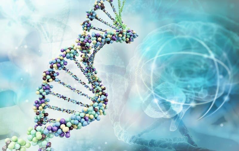 Ilustração de Digitas de um ADN ilustração stock