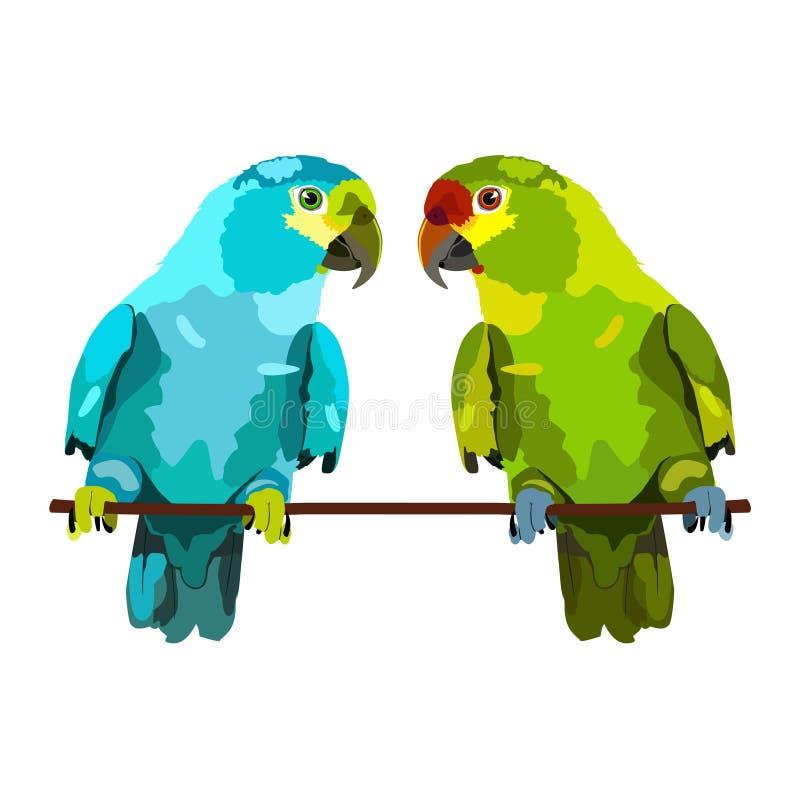 Ilustração de dois papagaios ilustração royalty free