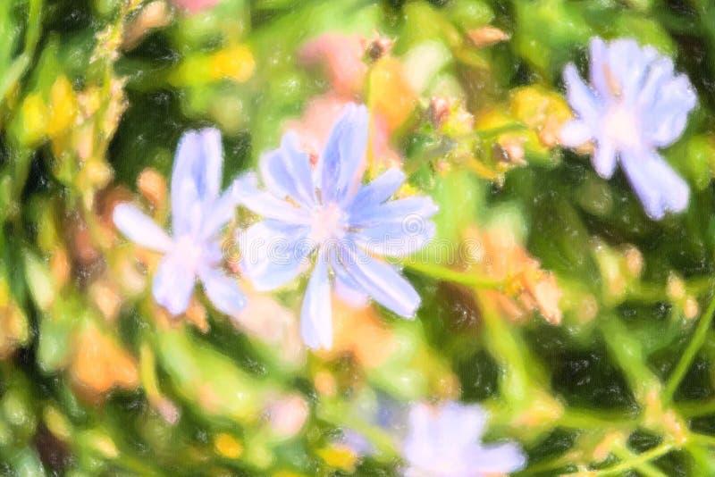 Ilustração de flores da chicória no fundo verde imagem de stock royalty free