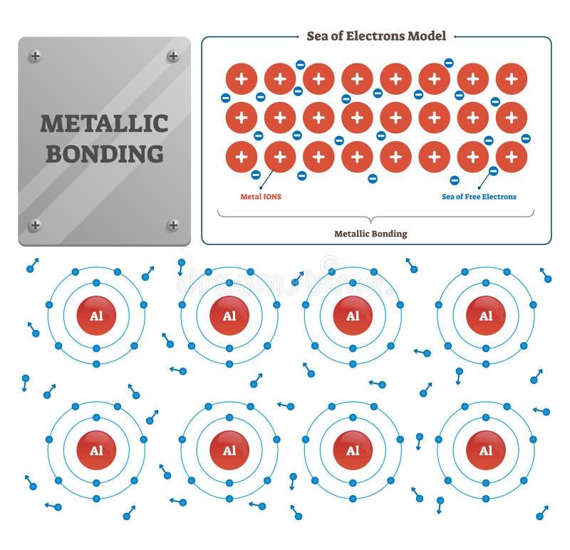 Ilustração de ligamento metálica do vetor Mar etiquetado dos íons e dos elétrons do metal ilustração do vetor