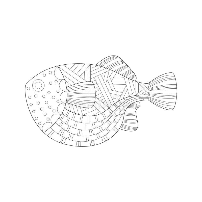 Ilustração de livro para colorir preto e branco adulta de Zentangle da grande natureza subaquática tropical do mar dos peixes ilustração do vetor