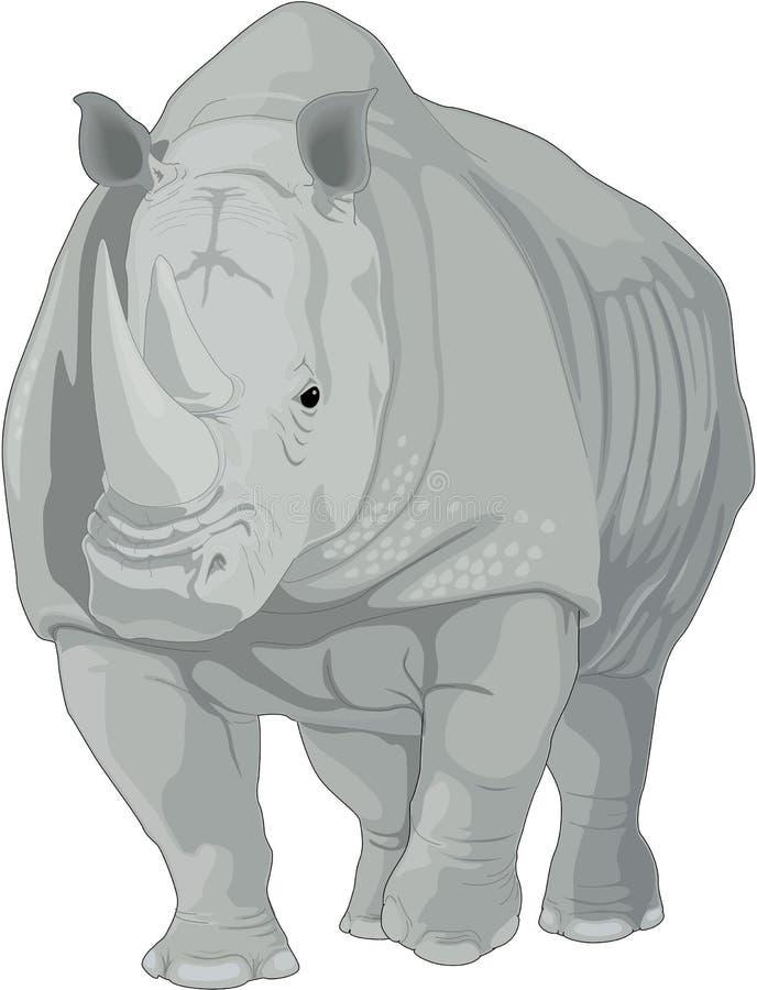 Ilustração de passeio do rinoceronte ilustração royalty free