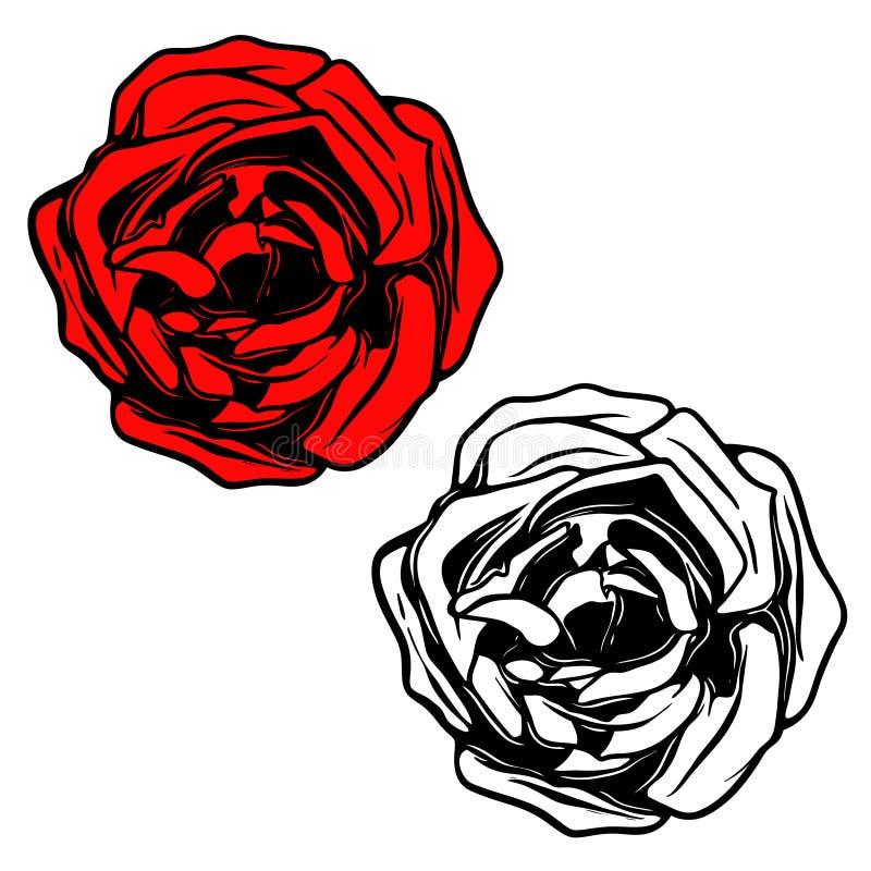 Ilustração de Rosa no estilo da tatuagem Projete o elemento para o logotipo, etiqueta, emblema, sinal, bandeira, cartaz ilustração do vetor