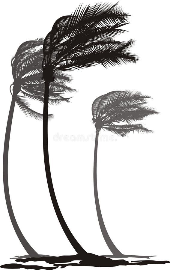 Palmas no vento ilustração royalty free