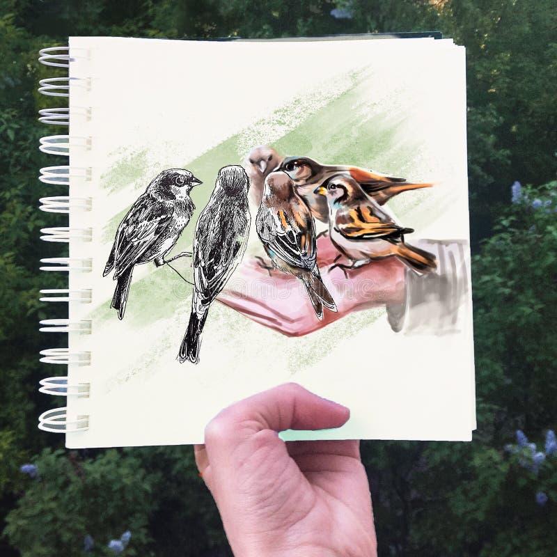 Ilustração de um pássaro em uma mão ilustração royalty free