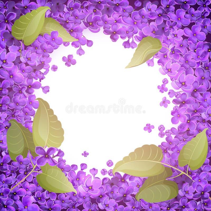Ilustração de um quadro redondo das flores e das folhas do lilás imagem de stock