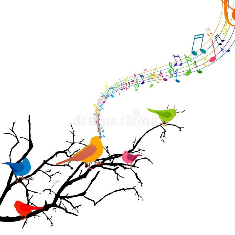 Pássaros do canto