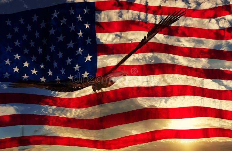 Ilustração de uma águia com fundo da bandeira americana ilustração do vetor