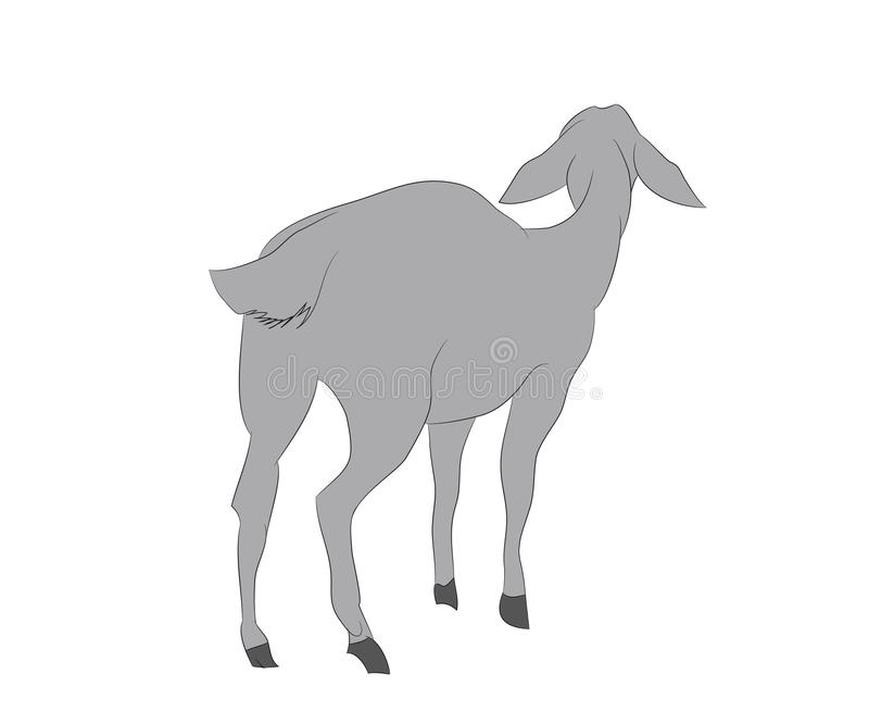 Ilustração de uma cabra que esteja, cor do vetor de tiragem ilustração stock